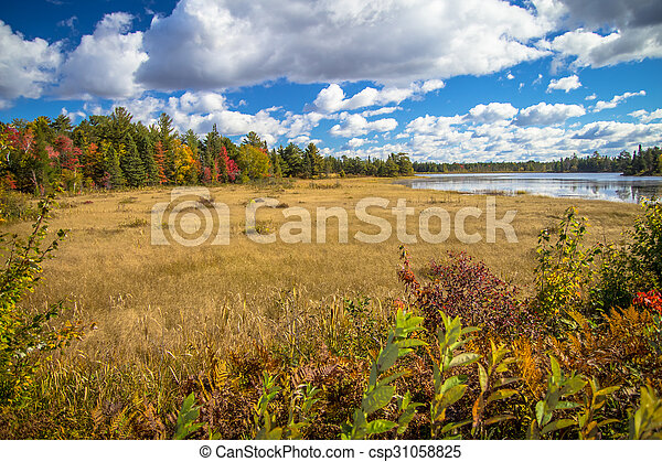 Autumn Wetlands - csp31058825