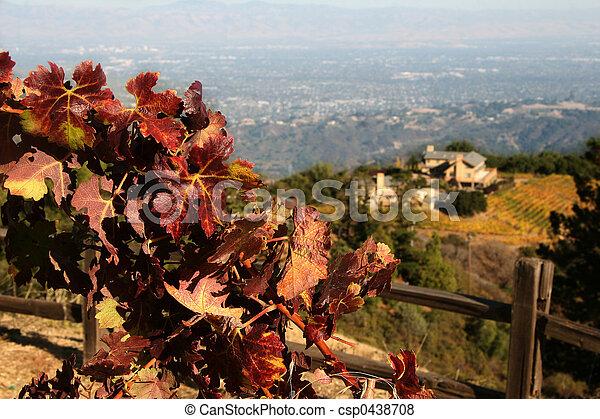 Autumn winery - csp0438708