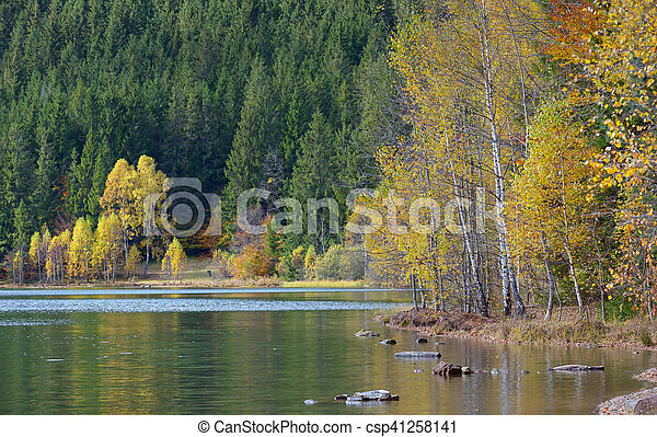 Autumn  with the yellow foliage, reflected in Lake - csp41258141