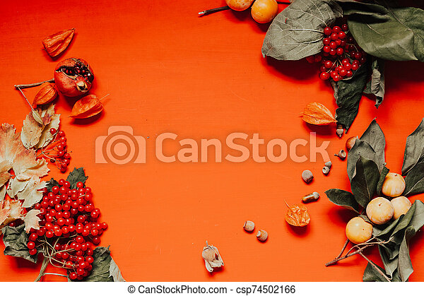 AUTUMN YELLOW LEAVES ON A RED BACKGROUND - csp74502166