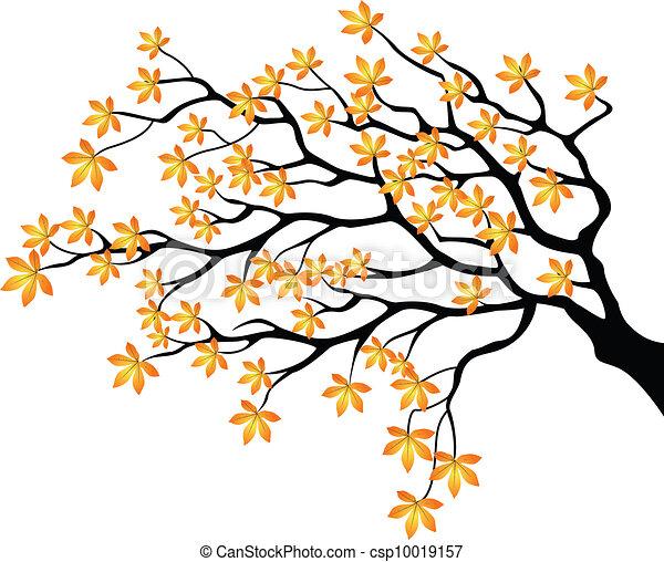 Autumnal branch - csp10019157
