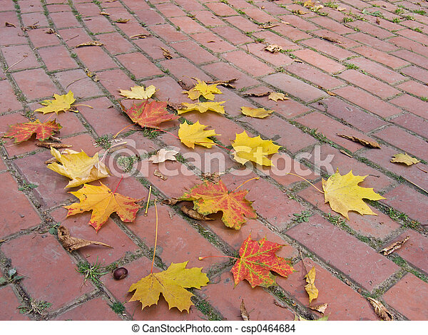 Autumnal circles (1) - csp0464684