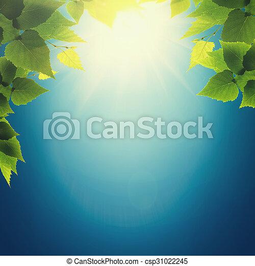 Autumnal haze, abstract environmental backgrounds - csp31022245