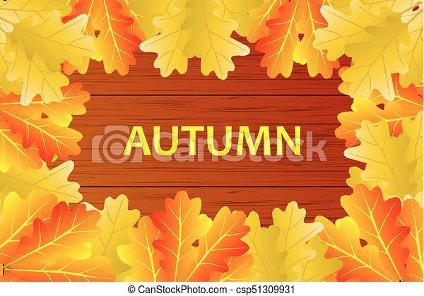Autumnal leaf of oak - csp51309931