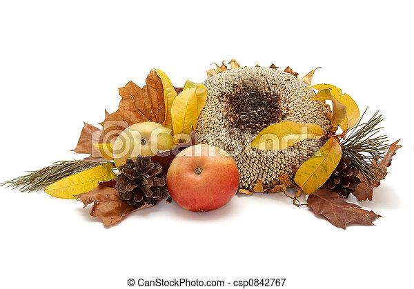 Autumnal leaves arragement - csp0842767