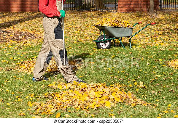 Autumnal leaves in a garden - csp22505071