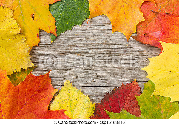 Autumnal leaves over wooden background - csp16183215