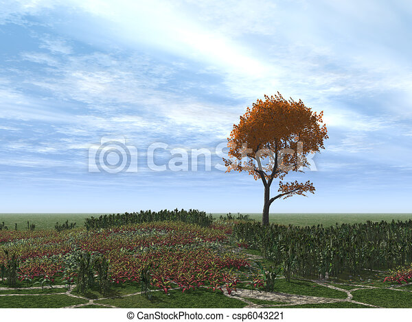 Autumnal tree alone  - csp6043221