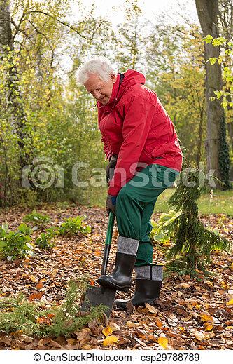 Autumnal works in a garden - csp29788789
