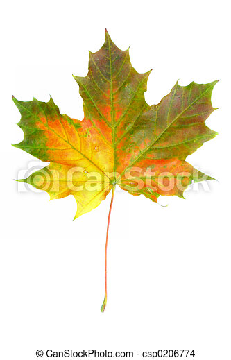 autunno, #2, colori - csp0206774
