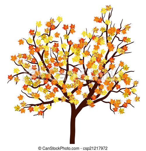 autunno, albero, acero - csp21217972