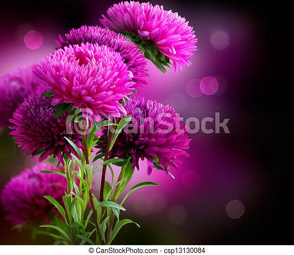 autunno, disegno, aster, fiori, arte - csp13130084