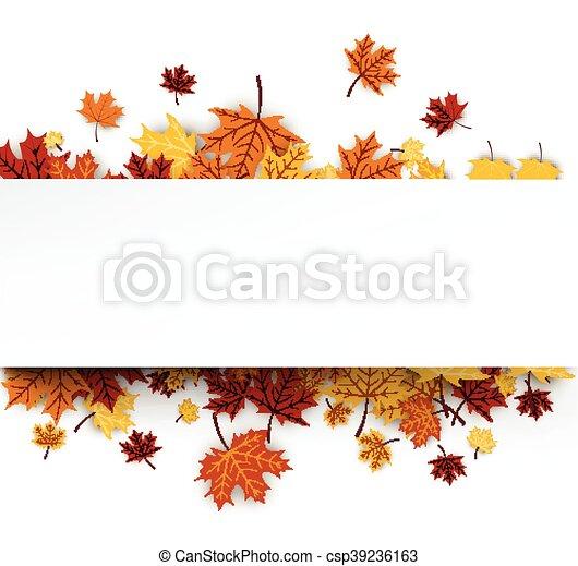 autunno, fondo, acero, leaves. - csp39236163