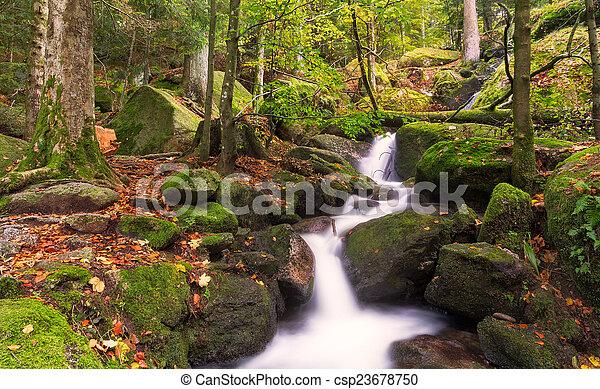 autunno, foresta, nero, cascate, germania, gertelsbacher - csp23678750