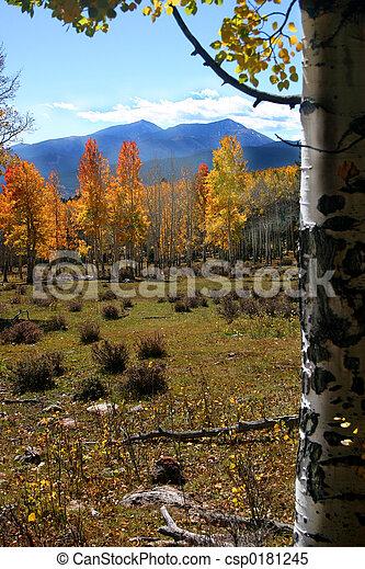autunno, montagna, roccioso - csp0181245