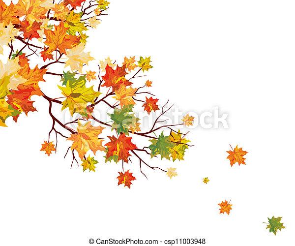 autunno parte, acero - csp11003948