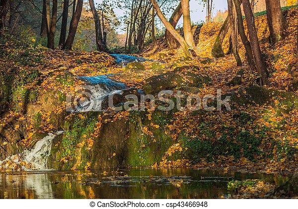 autunno, scenario, natura - csp43466948