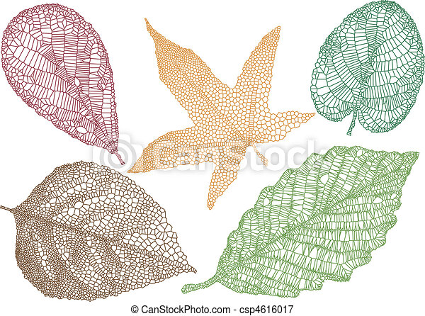autunno, vettore, foglie - csp4616017
