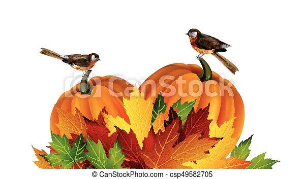 autunno, vettore, ringraziamento, composizione - csp49582705