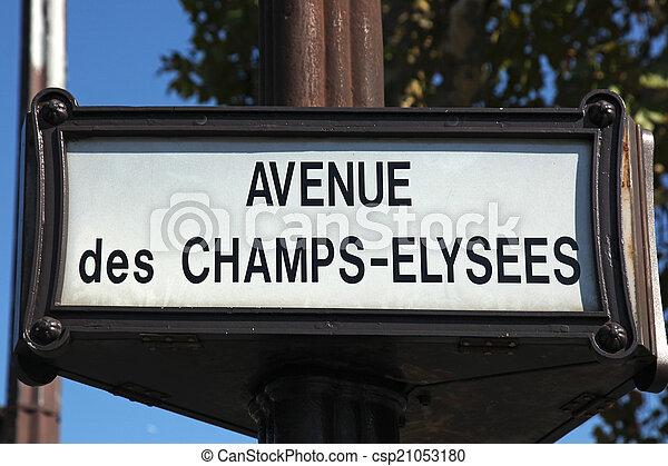 Avenue des Champs-Elysees Paris - csp21053180