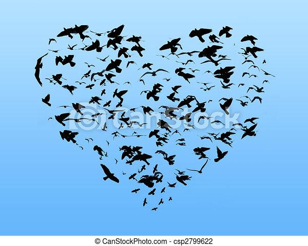Pájaros - csp2799622