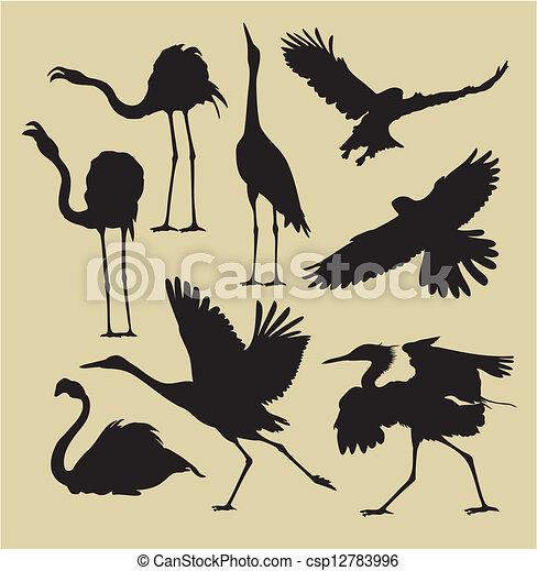 Pájaros - csp12783996