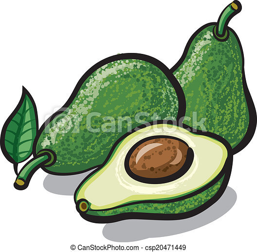 avocado - csp20471449