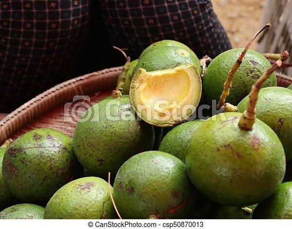 Avocado - csp50870013
