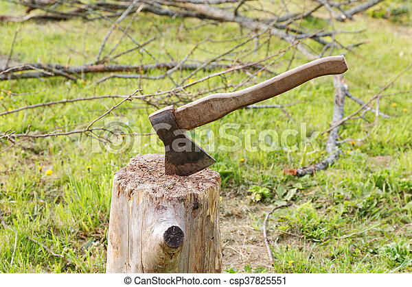 ax and branches of old trees on the grass - csp37825551