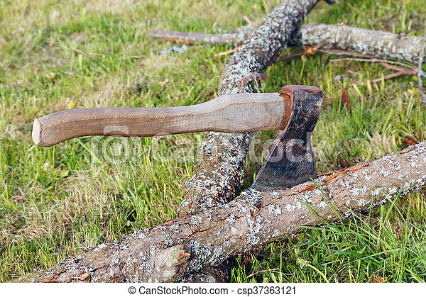 ax and branches of old trees on the grass - csp37363121