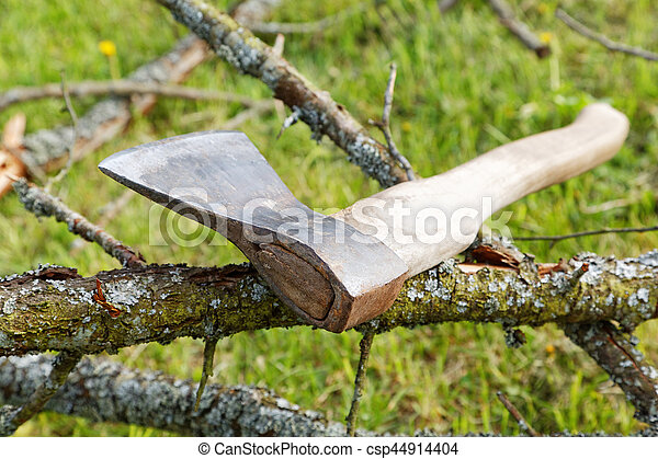 ax and branches of old trees on the grass - csp44914404