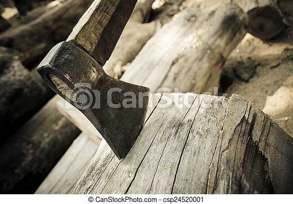 ax on the timber. - csp24520001