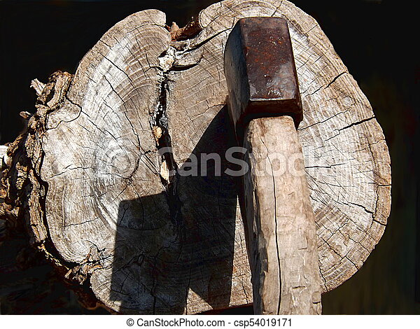 Ax with a sharp shadow on the log. - csp54019171