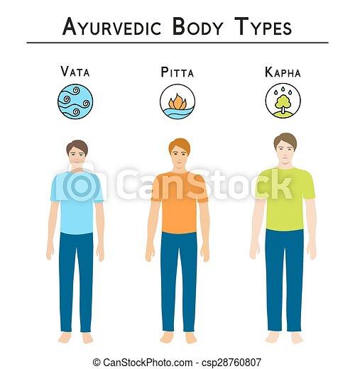 Ayurvedic body types. - csp28760807