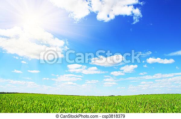 azul, campo, cielo verde - csp3818379