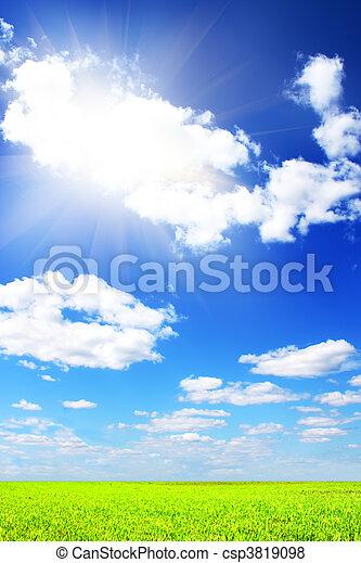 azul, campo, cielo verde - csp3819098
