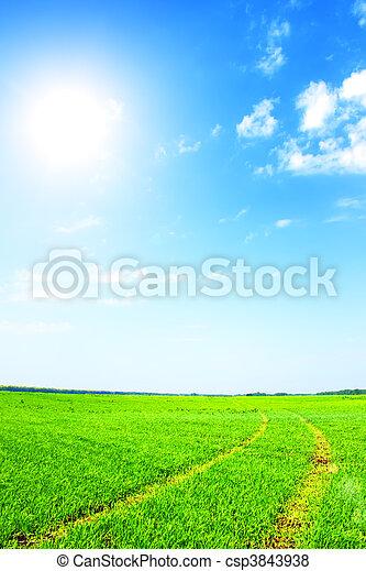 azul, campo, cielo verde - csp3843938