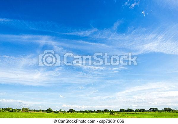 azul, clouds., cielo blanco, plano de fondo, textura - csp73881666