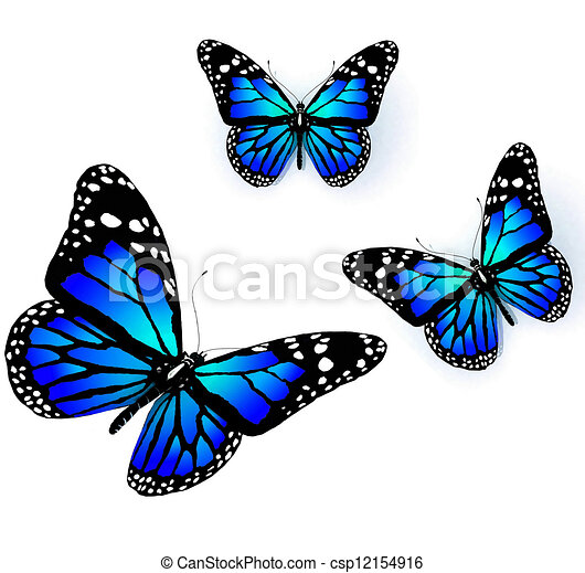Azul, color, mariposas, tres. Azul, color, tres, mariposas, plano de ...