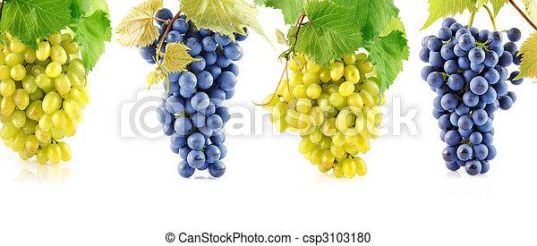 azul, conjunto, permisos de uva, amarillo, fruits - csp3103180