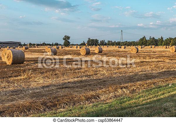 Hermoso paisaje campestre: fardos de heno dorados en campos cosechados y cielo azul con nubes - csp53864447