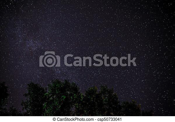 Cielo oscuro azul con muchas estrellas sobre el campo de los árboles. - csp50733041