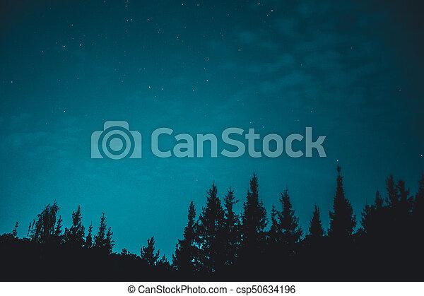 Cielo oscuro azul con muchas estrellas sobre el campo de los árboles - csp50634196