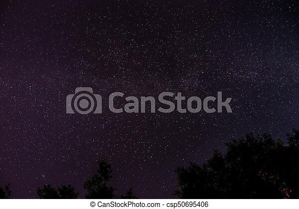 Cielo oscuro azul con muchas estrellas - csp50695406