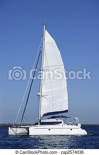 Un velero catamarán navegando en aguas del océano azul - csp2574036
