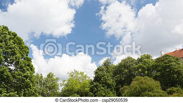 Árboles y techo sobre el cielo azul con nubes - csp29050539
