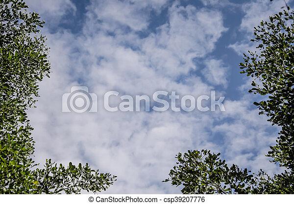 Cielo azul con nubes blancas - csp39207776
