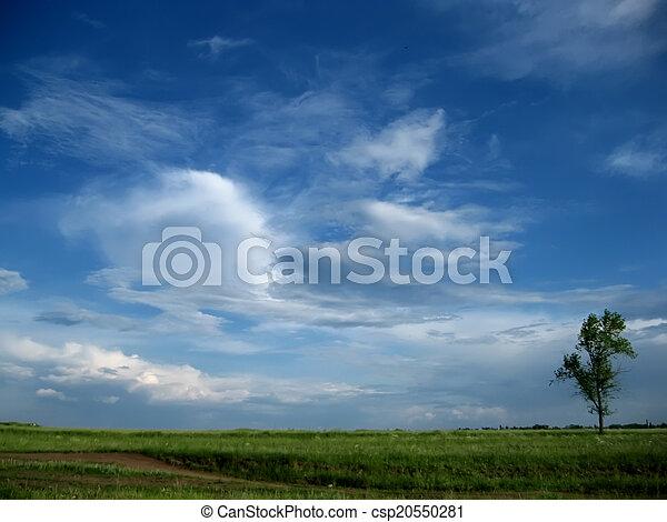 Cielo azul con nubes - csp20550281