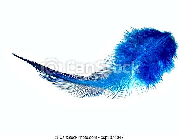 azul, pena - csp3874847