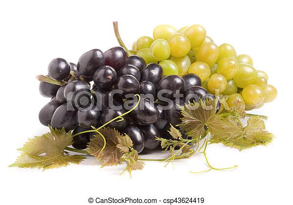 Un montón de uvas verdes y azules con hojas aisladas en el fondo blanco - csp43624419